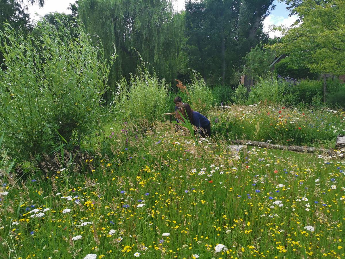 Eco-Garden flourishes at Senior School Voorschoten