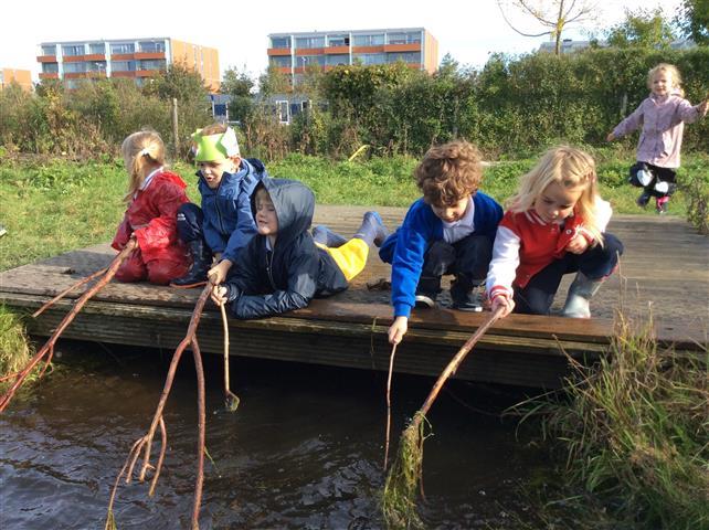 British School in The Netherlands