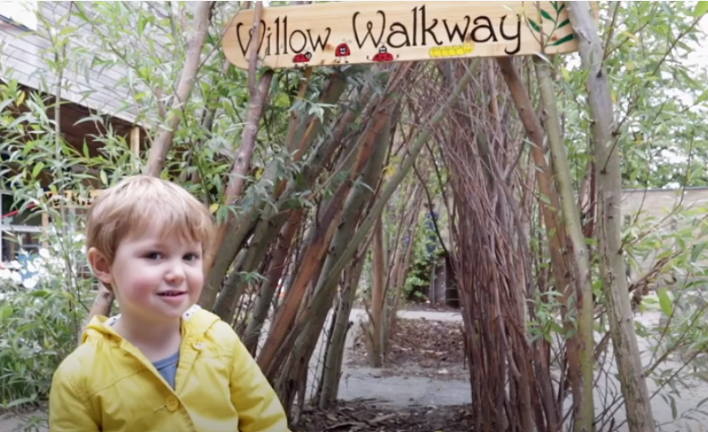 willow walkway JSD